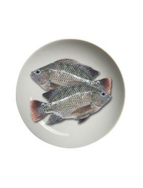 THAI Frozen Ikan Nila 1kg