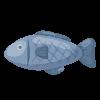 Fish (魚肉)